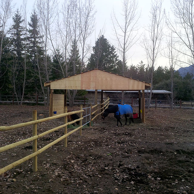 Custom 3 rail Horse Fence